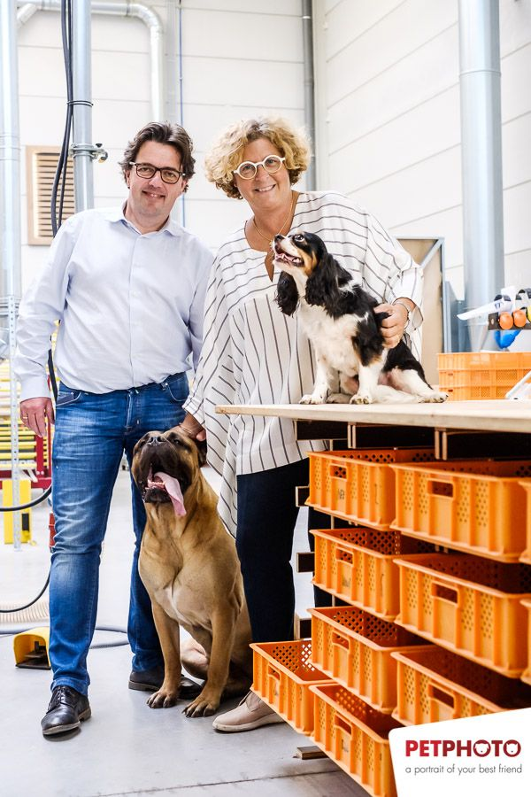 Dog Flap | Cat Flap | Dog Door | Cat Door | Tomsgates workshop in Aartselaar (Belgium) where wooden dog flaps and cat flaps are made with Ivan and Ann and their dogs Tinta (Cavalier King Charles) and Moscat (Bull Mastiff) | © Tomsgates